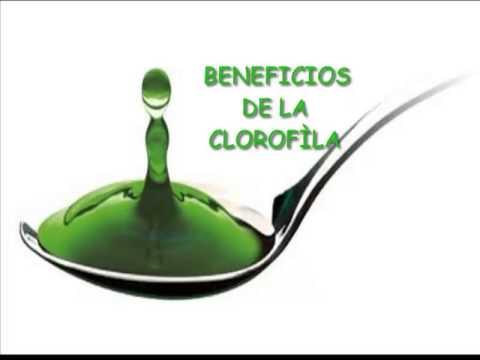Beneficios de la Clorofila Liquida para la Salud