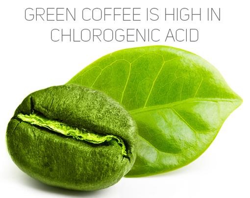 ¿Que es el green coffee?