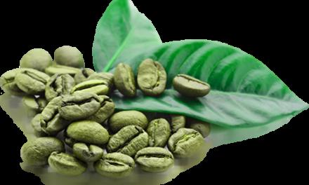 ¿Baja de peso el Green Coffee?