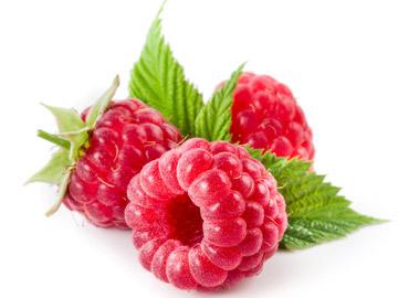¿Donde comprar Raspberry Ketone en Lima Peru?