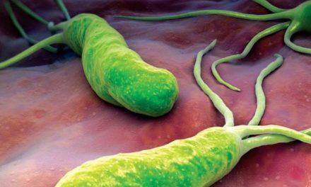Tratamiento natural para el Helicobacter Pylori