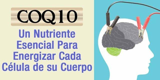 ¿Donde venden Co-Enzima Q10 en Lima Peru?